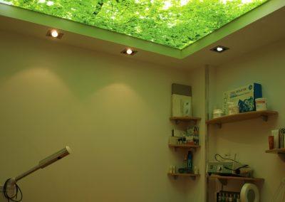 techos 3D estética